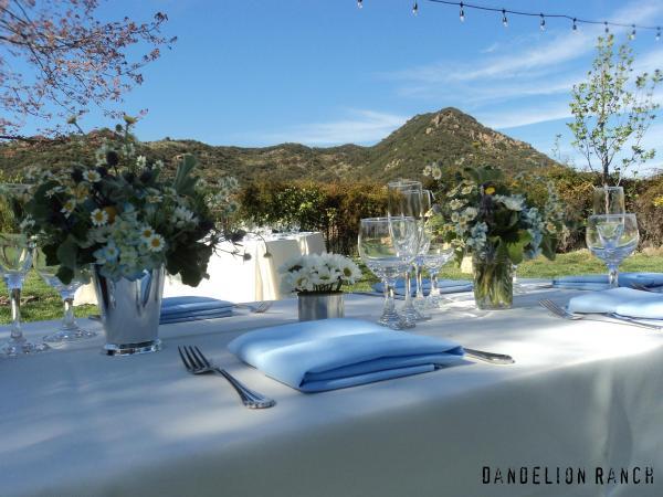 Dandelion Ranch Table Setting