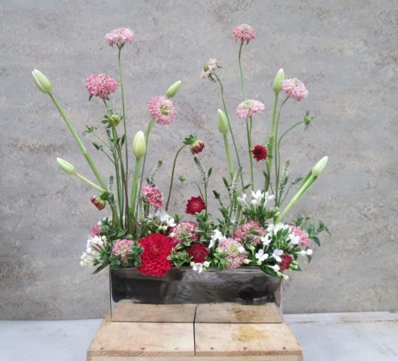 Raphaelle Pink screen