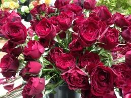 Maroon Spray Roses
