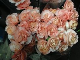 Peach Mini Carnations