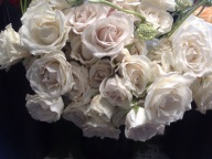 White Majolica Spray Roses