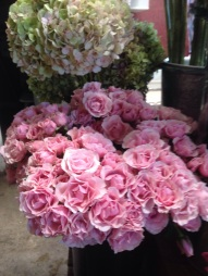 Pink Majolica Spray Roses