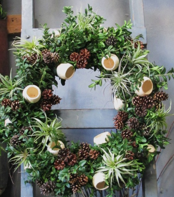 airplant, orange peels, pinecone wreath