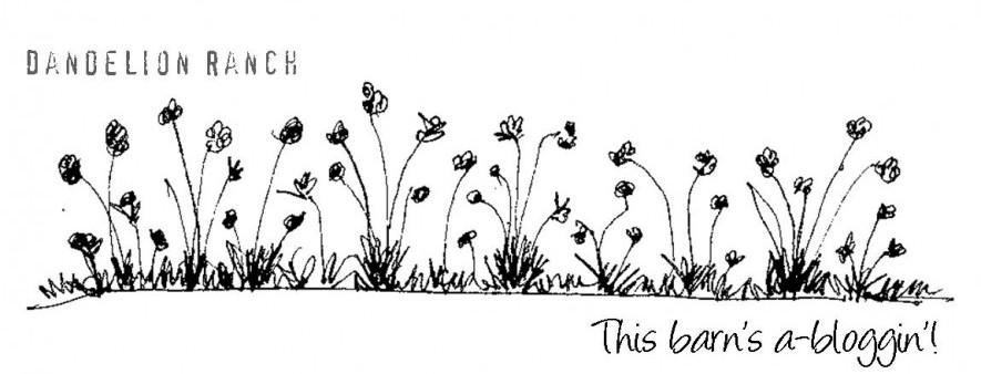 Allium Symbol Of Stinky Beauty Dandelion Ranch