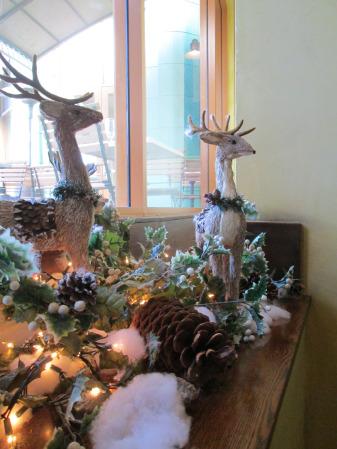catal-reindeer-2