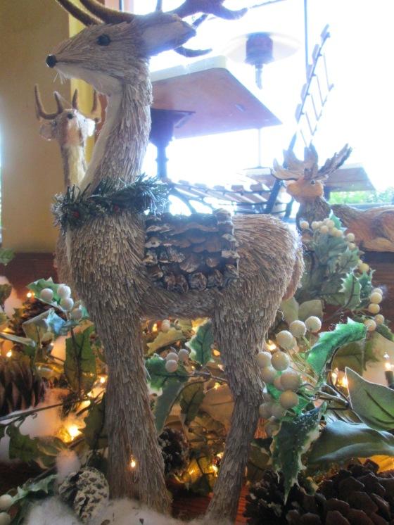 catal reindeer