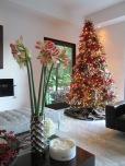 Chaz Holiday 2013 Amaryllis Tree