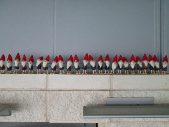 rays holiday gnomes 4